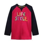 『小鱷魚童裝』設計風英文T恤(08號~18號)532420