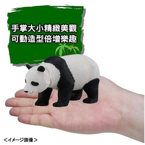TOMICA多美動物園 AS03 大熊貓_AN48793