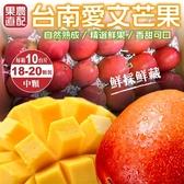 【果之蔬-全省免運】台南愛文芒果X10台斤/箱(18-20入)