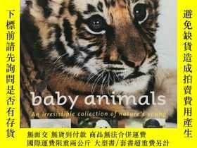 二手書博民逛書店Baby罕見Animals: An Irresistible Collection of Nature s You