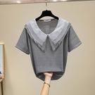 t恤上衣大碼XL-5XL2107胖mm加肥200斤條紋上衣寬松遮肚紗網拼接娃娃領短袖T恤女F5026胖妞衣櫥