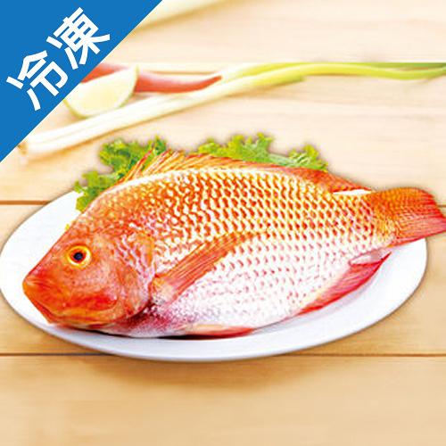 【台灣嚴選】尼羅紅魚1尾(500~600g/尾)【愛買冷凍】