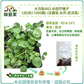 【綠藝家】大包裝A83.水田芥種子5克(約17000顆) (豆瓣菜.水芹.西洋菜)