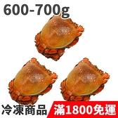 饕客食堂 3隻 澳洲旭蟹 600-700g/隻 海鮮 水產 生鮮食品