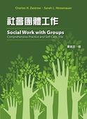 (二手書)社會團體工作