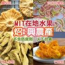 【T-SING炤興農產】MIT在地 芒果乾 鳳梨乾 情人果乾 珍珠芭樂乾 200g 不含防腐劑