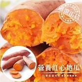 【果之蔬-全省免運】台農66號紅地瓜(5台斤±10%)