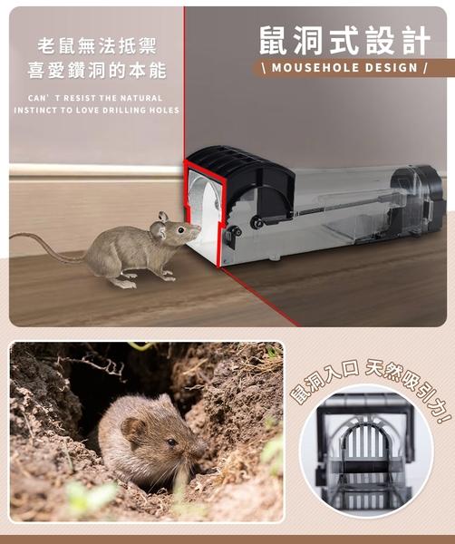 現貨!高靈敏捕鼠器 鼠洞式捕鼠器 捕鼠籠 捕鼠神器 滅鼠 驅鼠 老鼠籠 老鼠夾 抓老鼠 #捕夢網