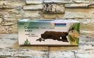 【西高地水族坊】造景擺飾-ISTA 陶瓷樹洞 異形 鼠魚
