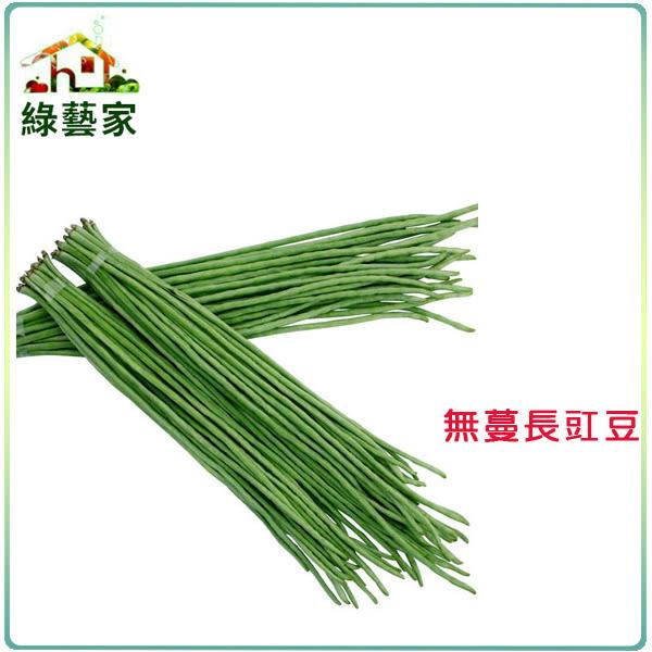 【綠藝家】大包裝E10.無蔓長豇豆(無蔓矮腳品種)種子120克