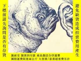 二手書博民逛書店罕見The Flounder 英文原版 比目魚 君特.格拉斯 G