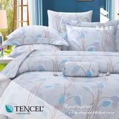 全鋪棉天絲床包兩用被 雙人5x6.2尺 茉凡詩 100%頂級天絲 萊賽爾 附正天絲吊牌 BEST寢飾