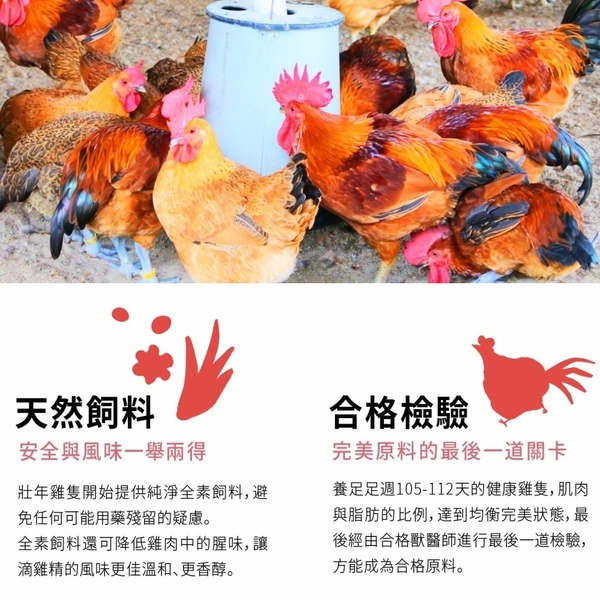 【諾亞牧場】烏寶滴雞精20入x4盒(烏骨雞)