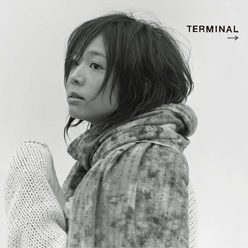 Salyu /Terminal
