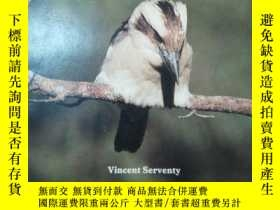 二手書博民逛書店Animals罕見in the Wild KookaburraY