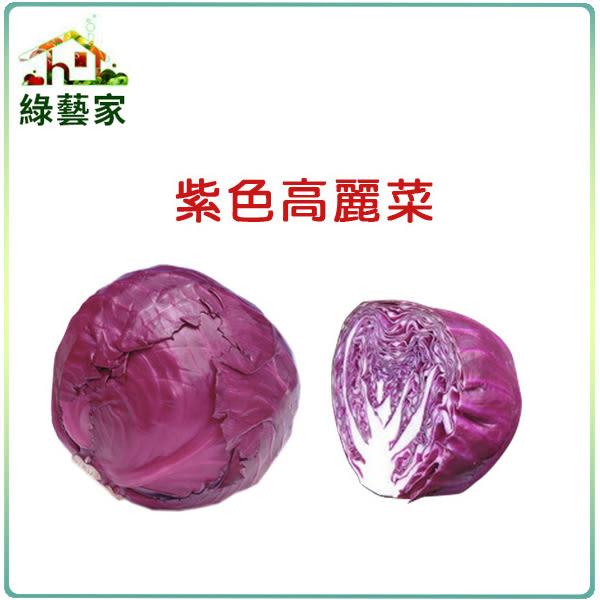 【綠藝家】大包裝B19紫色高麗菜種子3克
