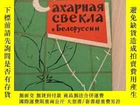 二手書博民逛書店罕見白俄羅斯糖用甜菜(外文見圖)Y302069 不祥 不祥 出版