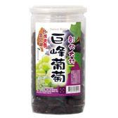 【台灣美食全紀錄】彰化大村巨峰葡萄乾  400g