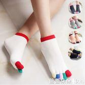 五指襪女 女士短筒彩指五指襪 分趾襪 簡約舒適  全純棉 吸汗透氣舒適 芭蕾朵朵