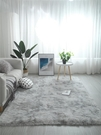 地墊 地毯客廳茶幾臥室滿鋪可愛網紅同款床邊毛毯地墊子大面積TW【快速出貨八折下殺】