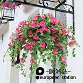 仿真花藤/牽牛花 塑料花裝飾花 掛壁「歐洲站」