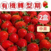 香氣迷人,通過373項檢驗!特級有機轉型期草莓(中果)20入/300g/盒x2盒(免運宅配)