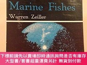 二手書博民逛書店Tropical罕見Marine Fishes Of Southern Florida & The Bahama