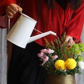 空之間生設計師創意澆水壺家用園藝輕便澆花長嘴壺鐵藝復古手工漆