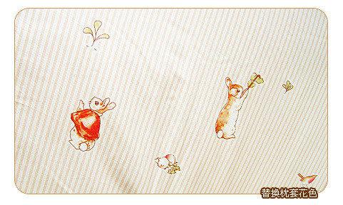 【奇買親子購物網】奇哥 彼得兔田園童趣乳膠圓型枕套(2入)+枕心