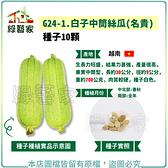 【綠藝家】G24-1.白子中筒絲瓜(名貴) 種子10顆