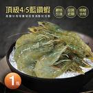 【屏聚美食】頂級藍鑽蝦1包(500g±1...