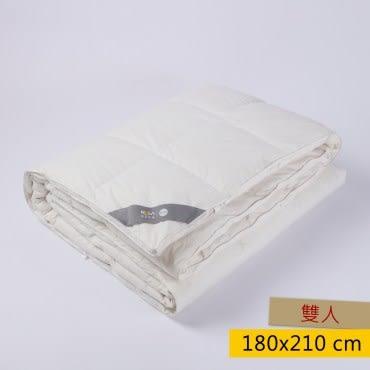 HOLA 90/10 可水洗奈米科技防蟎抗菌羽絨冬被 雙人