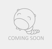 大流感:致命的瘟疫史(經典回歸版)【城邦讀書花園】