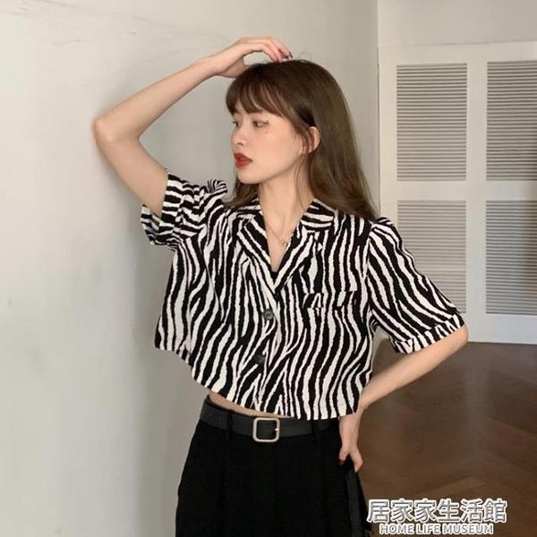 斑馬紋西裝領短袖襯衫夏季2020年新款韓版設計感復古短款上衣女夏 中秋節全館免運