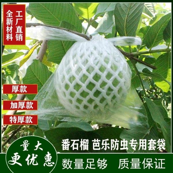果實套袋 包番石榴套袋芭樂防蟲防鳥專用泡沫網套一體水果套袋子網套保護袋 3C數位百貨