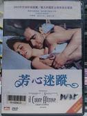 影音專賣店-H06-010-正版DVD*電影【芳心迷蹤】-尼利馬可利