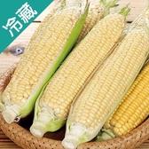 產銷履歷玉米/包(400g±5%/包)【愛買冷藏】