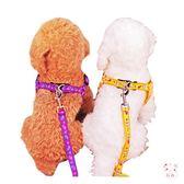 狗狗牽引泰迪狗鍊子項圈小型犬胸背帶小狗狗牽引繩幼犬貓咪遛狗繩寵物用品(行衣)