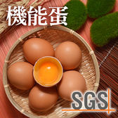 SGS認證-俊韋機能蛋4盒免運組