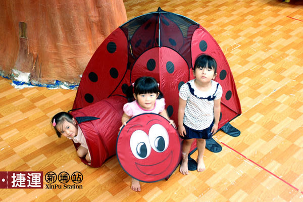 雙門隧道式瓢蟲造型折疊帳篷兒童遊戲球屋651