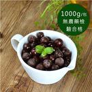 進口急凍莓果-黑醋栗1公斤/包