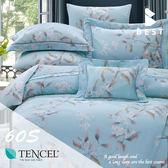 60支天絲床包兩用被四件式 加大6x6.2尺 雷奧蒂 100%頂級天絲 萊賽爾 附正天絲吊牌 BEST寢飾