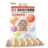 人生製藥 渡邊遠敏益生菌膠囊(60粒)x1