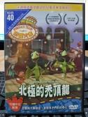 挖寶二手片-B54-正版DVD-動畫【恐龍火車:北極的禿頂龍】-國英語發音(直購價)