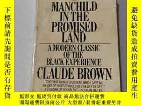 二手書博民逛書店MANCHILD罕見IN THE PROMISED LAND:在應許之地的人類(外文)Y212829