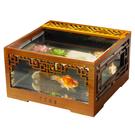 魚缸 古典創意金魚缸生態魚缸桌面小型帶過濾蝦缸水族箱懶人缸風水魚缸 MKS極速出貨