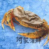 【阿家海鮮】活凍軟殼蟹 (600g±10%/盒)(8隻)
