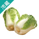 產銷履歷山東大白菜/粒(1kg±5%/粒)【愛買冷藏】