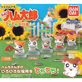 全套6款【日本正版】哈姆太郎 排隊公仔 P2 扭蛋 轉蛋 行進公仔 排排站公仔 每每 小眼鏡 - 633372