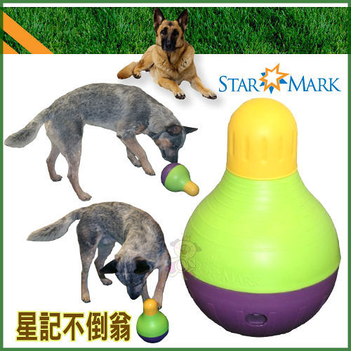 *WANG*【美國 Starmark】Bob-A-Lot《星記不倒翁》抗憂鬱益智玩具 (L號)